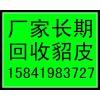锦州收貂的锦州貂皮回收锦州哪有收购貂皮大衣的快速上门