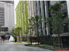 曼谷商业区高性价比现房最新出炉