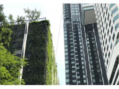 投资首选,曼谷首个日本人居住社区Mori Haus