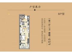 东戴河 海天印象 精装修 送全套家具家电 均价7000元