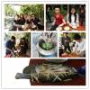 惠州大亚湾农家乐野炊+漂流+水上乐园+海边单车自驾休闲游