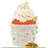 冻酸奶冰淇淋加盟
