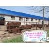 广东省梅州市利木赞牛价格多少