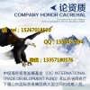 中盈网上海在线招商会员单位平台中心