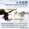 中盈网互联网代理怎么做丨会员单位办事处丨上海运营中心