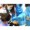 纹绣美甲培训新年特惠活动