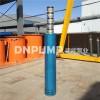 输送海水盐水潜水泵/不锈钢材质