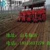 半自动移栽机长期供应移栽机厂家直销