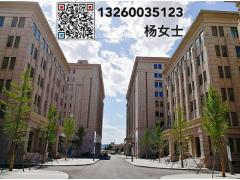 亦庄南面联东U谷 独栋研发办公楼 可注册、环评 50年大产权