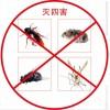 杀蟑螂、灭老鼠、灭红蚂蚁、臭虫、跳蚤服务全城济宁