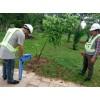 丽江市自来水管网漏水检测,消防管网漏水检测,各种暗漏检测