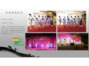深圳女子十二乐坊.女子电音小提琴.四重奏