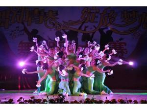 深圳舞蹈节目:中国风舞蹈主题序列节目推荐:春晚绽放舞蹈等