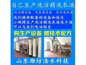 河北洗衣液防冻液车用尿素产品设备厂家