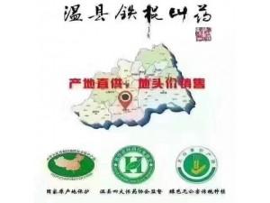 河南温县铁棍山药绿色无公害