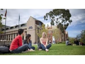 国内考研vs出国留学,该如何选择