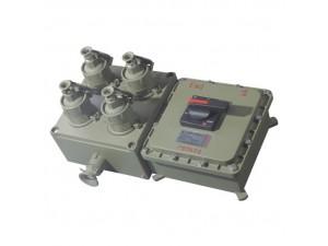 BX口一口C系列防爆照明(动力)配电箱(检修电源插座箱)