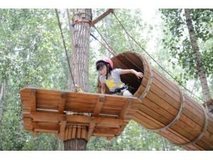 贵州穿越丛林拓展设备价格项目定制厂家供应商探险乐园哪家好