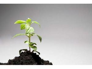 第三方建设用地土壤检测企业场地调查