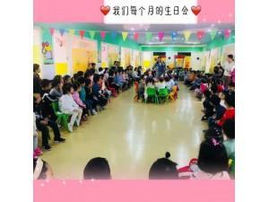 江东区艾迪尔双语幼儿园招生中