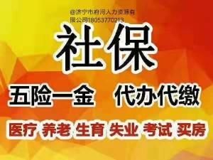 济宁中小企业代理五险代办公积金劳务外包