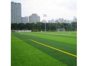 北京哪里有卖仿真草坪人造草坪