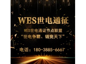 WES世电通证节点联盟