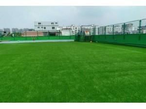 北京销售仿真草坪
