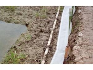 厂家直供全新料青蛙养殖网加粗加厚防逃网