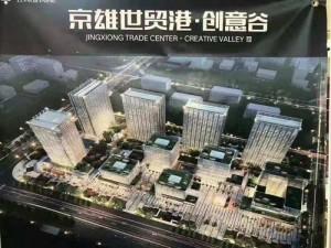 白沟京雄世贸港紧邻新区价值洼地