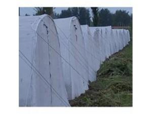 厂家直销蚂蚱养殖网基乙烯全新料白色透气养殖网棚