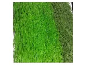 北京哪有仿真草坪厂家批发出售