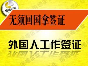 国家鼓励人才引进,申请中国工作签证有什么必要条件?