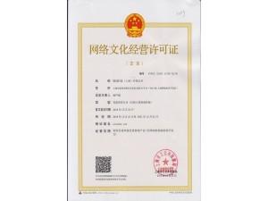 上海文网文+ICP+国域科技公司执照转让