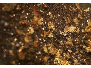铂思特含砷金矿石提金技术,从黄金氰化尾渣中回收铁的方法