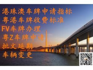 持有FV车牌与粤Z车牌的优势及粤港车牌转让费用