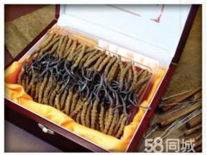 上海高价回收冬虫夏草海参藏红花海参鹿茸