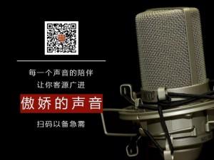 湖南真人配音广告宣传专题配音(傲娇配音为您服务)