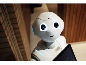 2019中国机器人展览会北京机器人展会