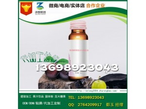 上海植物酵素复合乌梅饮品研发研发服务