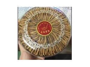 济南回收冬虫夏草13611114534收购同仁堂虫草