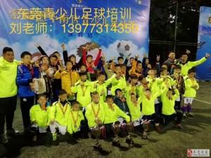 东莞哪里有少儿足球培训班