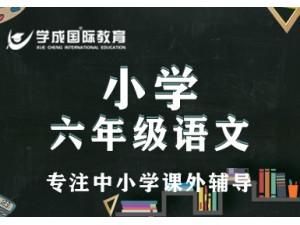 一对一课外全职老师培育补习