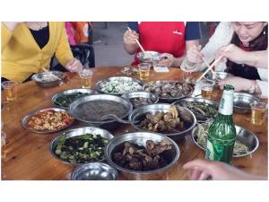 推荐深圳附近的清明节出游好地方九龙生态园欢迎你