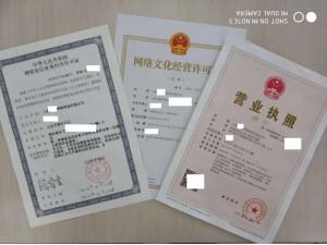 低价出售上海网络公司包含网文和icp游戏类型