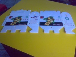 重庆塑料中空板直销厂家