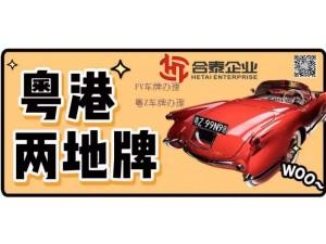免费提供中港粤港两地车牌深圳湾车牌指标申请