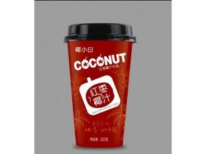杯装红枣椰汁饮料320ml15杯装饮料武汉代理