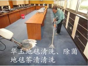 天河区员村地毯清洗消毒,高端泡沫清洗机清洗地毯专业有保障