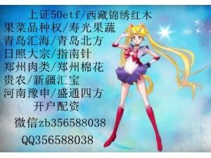郑州棉花抓品种趋势开户签约软件免费安装